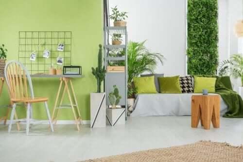 Pistaciegrøn i din indretning derhjemme