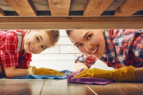 Oosouji - En effektiv, japansk rengøringsmetode