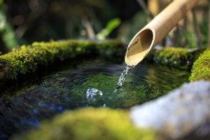 Zen-Garten mit Wasserspiel