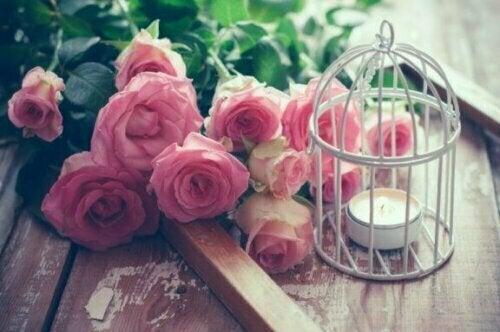 Die Kombination von Lichtern und Blumen in einem Vogelkäfig ist ebenfalls ein wirklich bezaubernder Look.