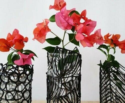 Pflanzen sind eine großartige Form der Dekoration und können deine Räume auch von Giftstoffen befreien.