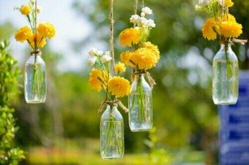 Recycle deine Glasflaschen und verwende sie als originelle Blumenvasen.