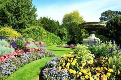 Ein Sommergarten voll lebhafter Farben