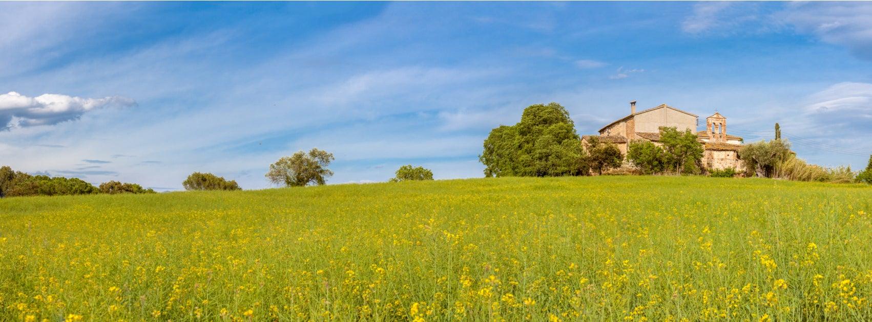 7 consejos para decorar tu casa de campo