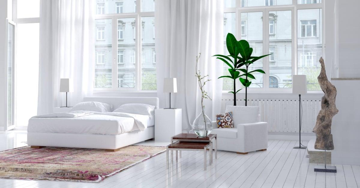 Habitación neutra con el punto de enfoque en la planta