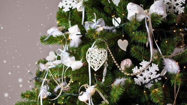 ¿Cómo elegir el árbol de Navidad correcto?