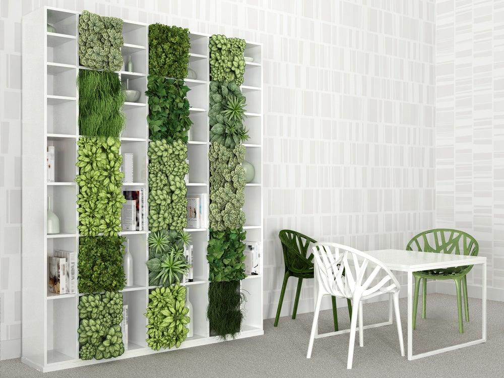 Jardín vertical ocupando los cuadrados vacíos de la estantería en un salón-comedor.