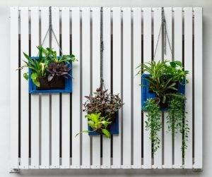 Jardín vertical maceteros colgados de un radiador