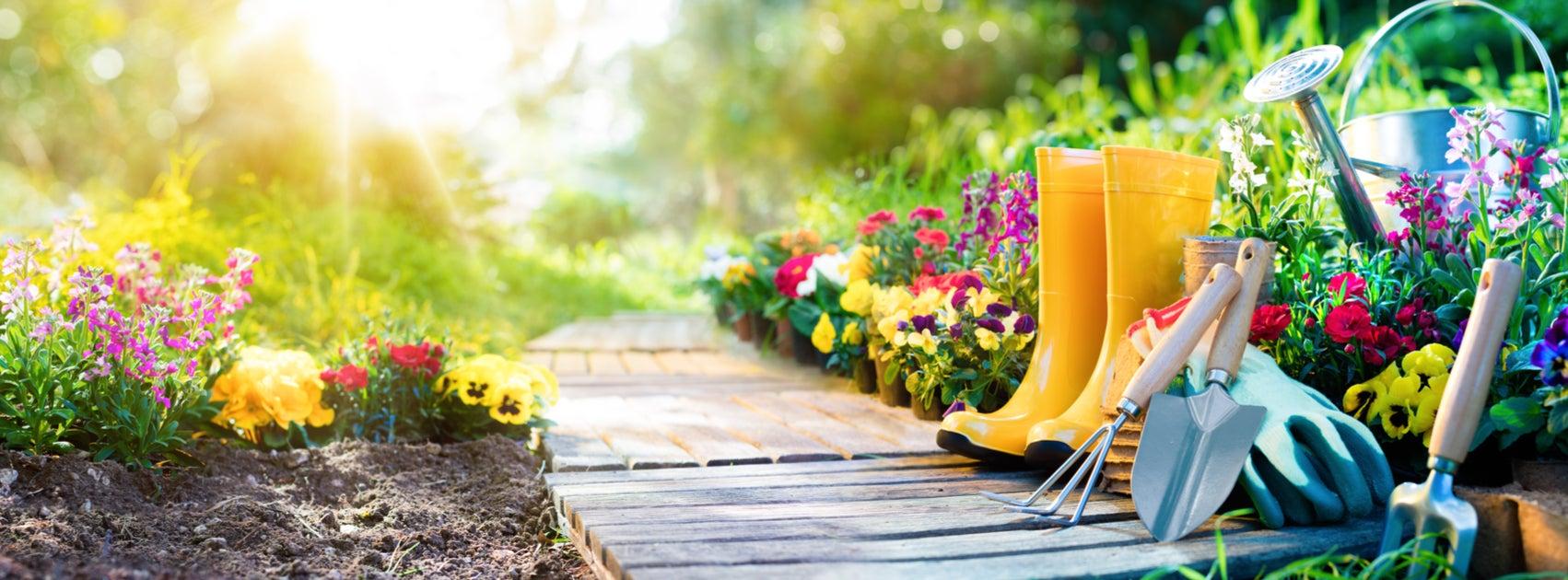¿Cómo diseñar tu jardín?