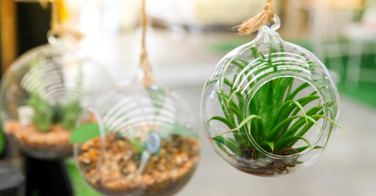 4 ideas para decorar un jardín pequeño