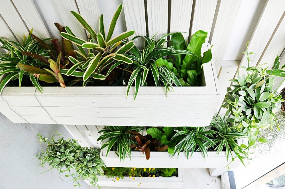 Maceteros de plantas verticales para un jardín pequeño.