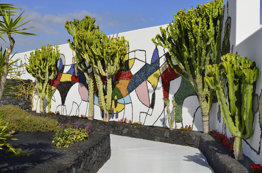 Decoración con plantas de César Manrique.