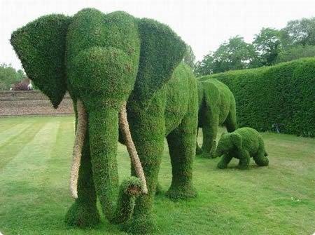 Seto podado artísticamente con forma de elefante