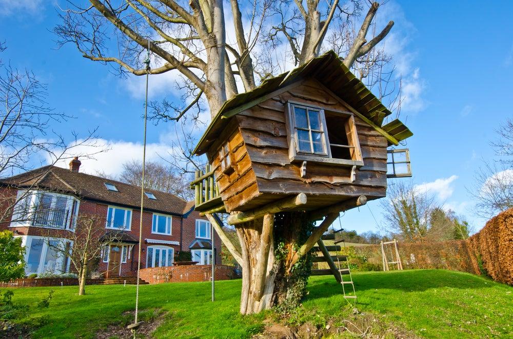 Casa en el árbol con un tronco gordo para dar seguridad.