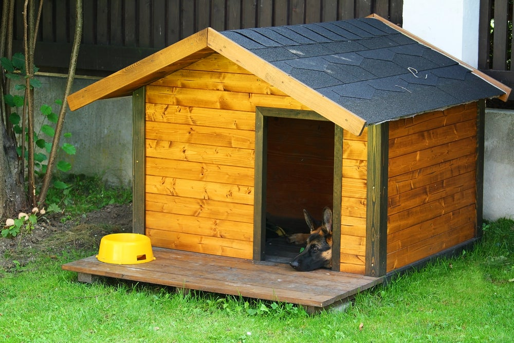 Caseta de perro con el techo a dos aguas.
