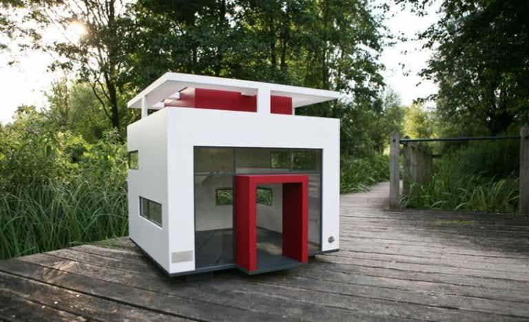 5 casetas de perro para el jardín