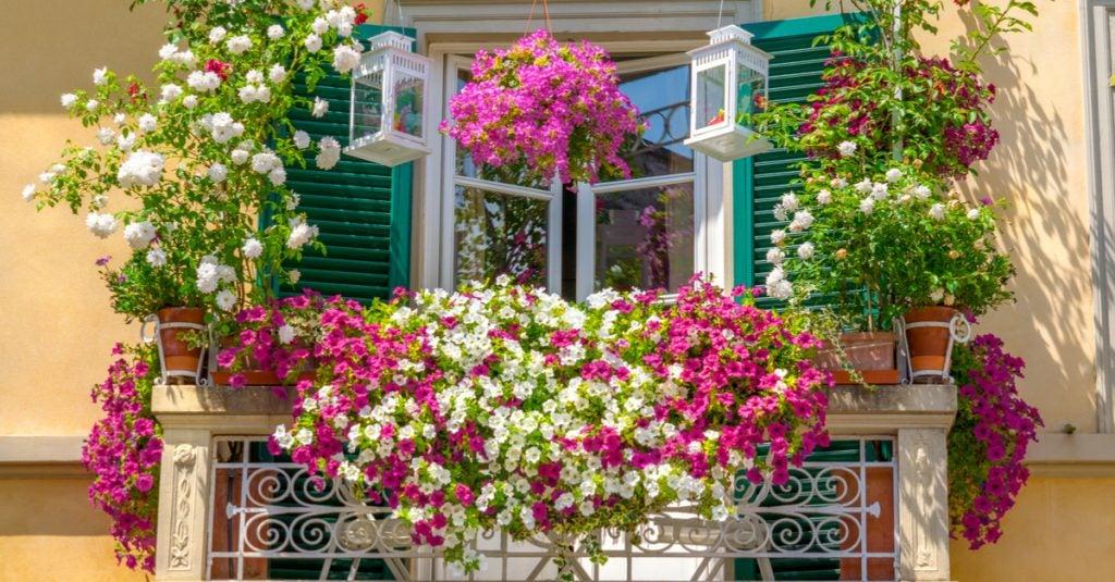 5 ideas de mini jardines para balcones