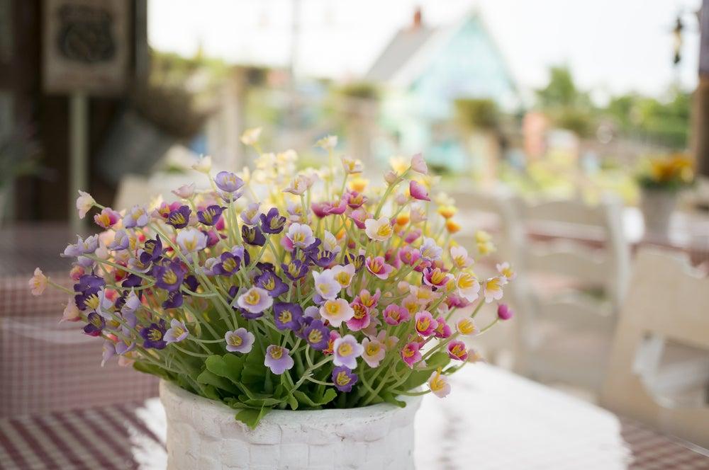 Centro de mesa con plantas.