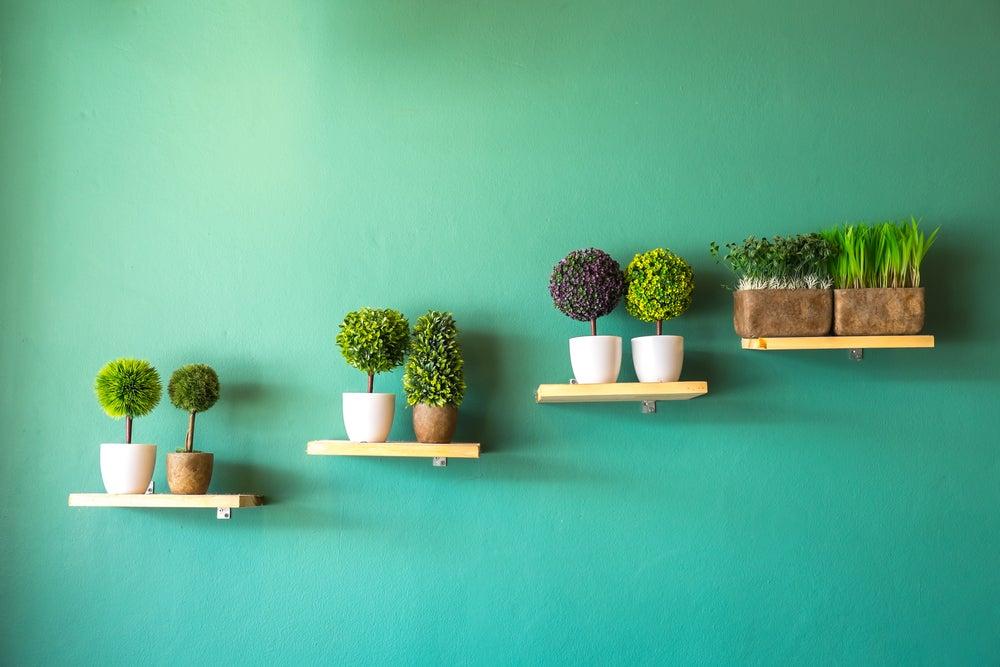Cómo decorar con murales botánicos