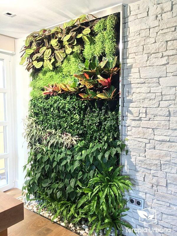 Ejemplo de jardín vertical en el interior de una vivienda.