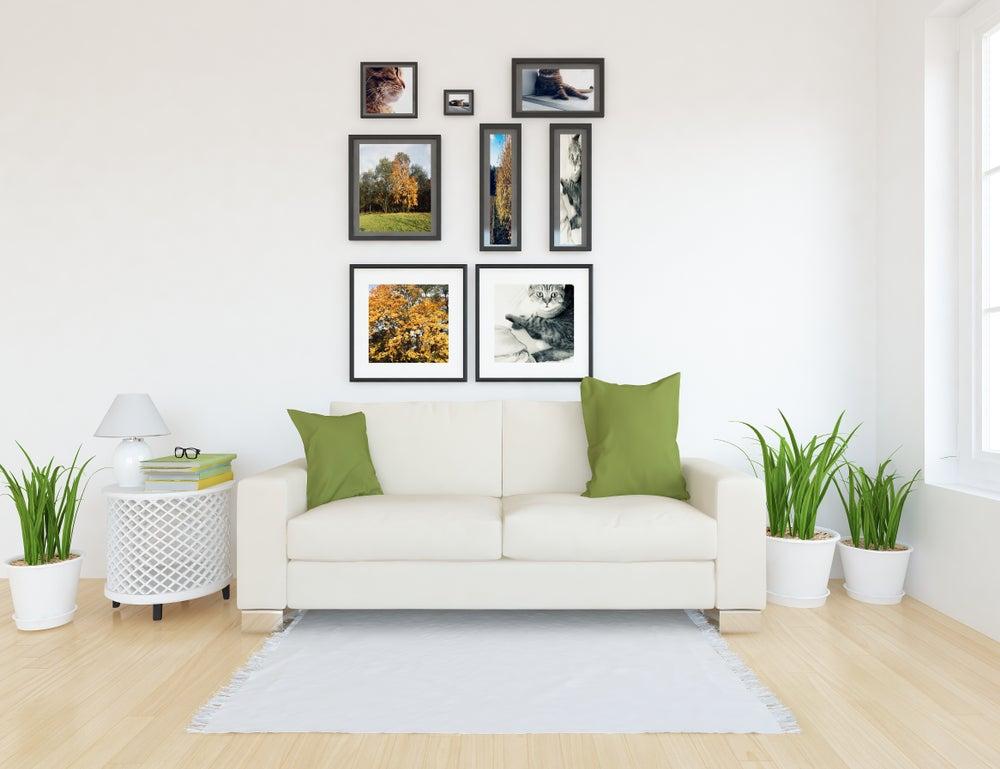 Murales botánicos fotografías de plantas.