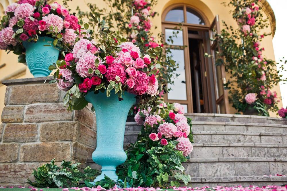 Consejos para el mantenimiento del rosal en perfecto estado
