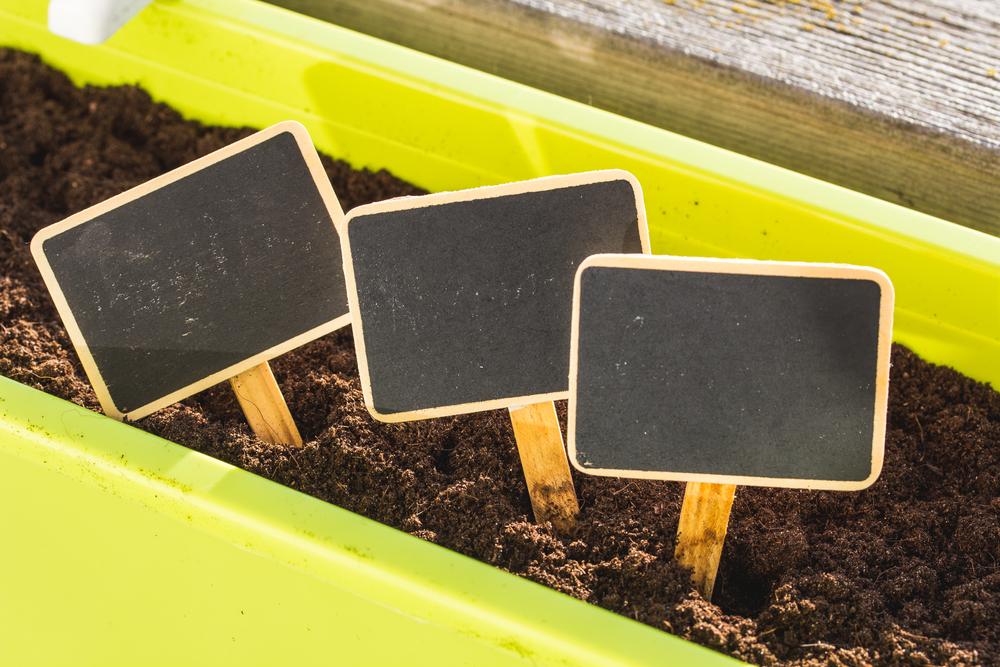 Carteles negro de pizarra para el huerto.
