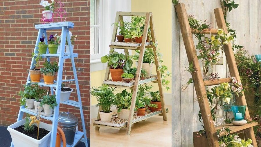 Escaleras con plantas.