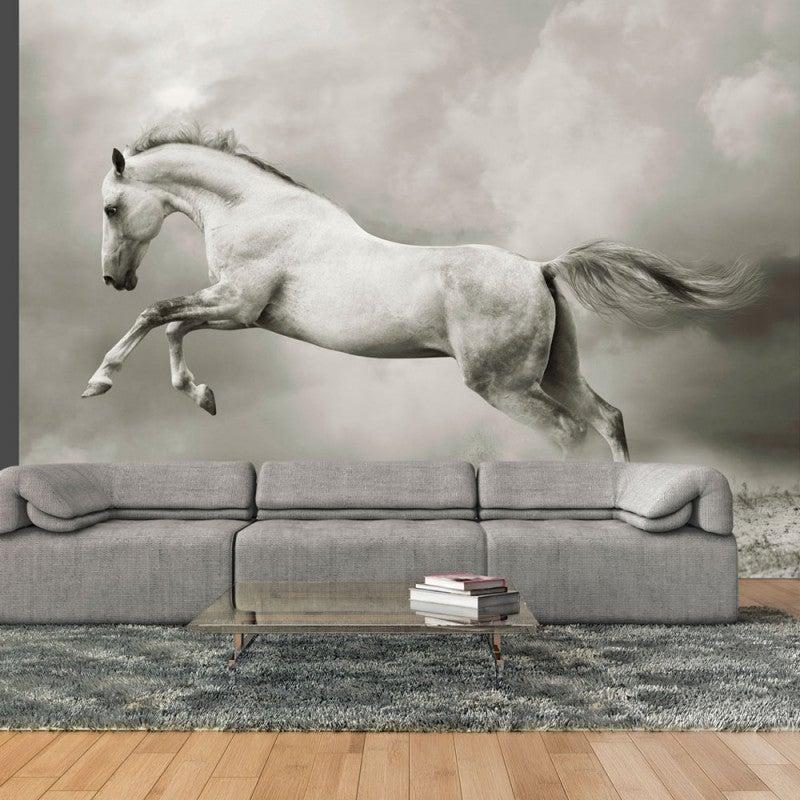 Fotomural de animales, caballo.