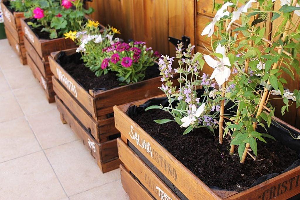 Jardines en miniatura con cajas de madera.
