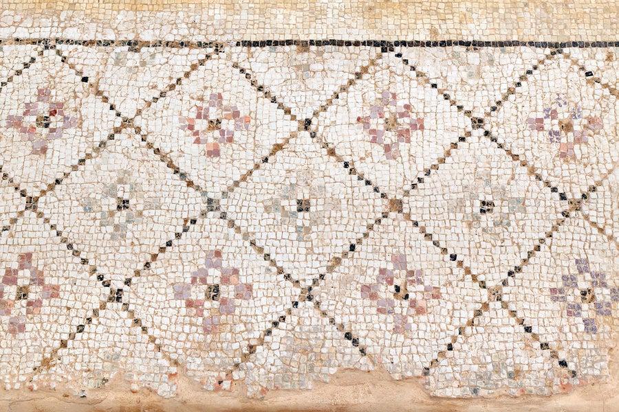 Los mosaicos recubrían los suelos en las viviendas romanas.