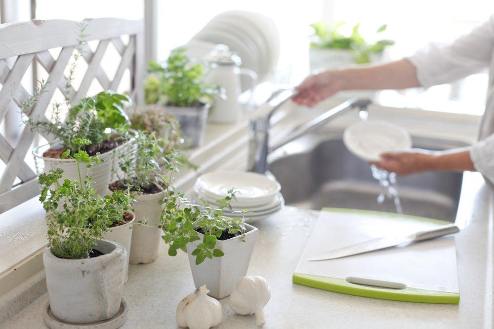 8 grandiosas ideas para decorar tu cocina con plantas