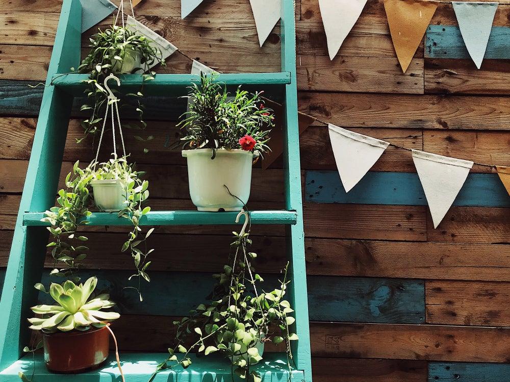 Soporte plantas escalera-estantería.