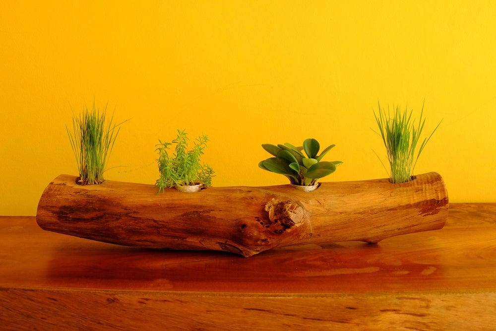 troncos de madera en maceta horizontal