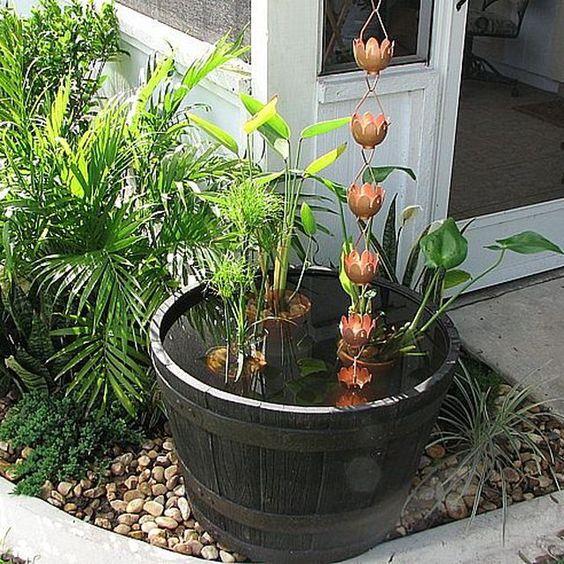 Las cadenas de lluvias pueden ayudar a regar las plantas.
