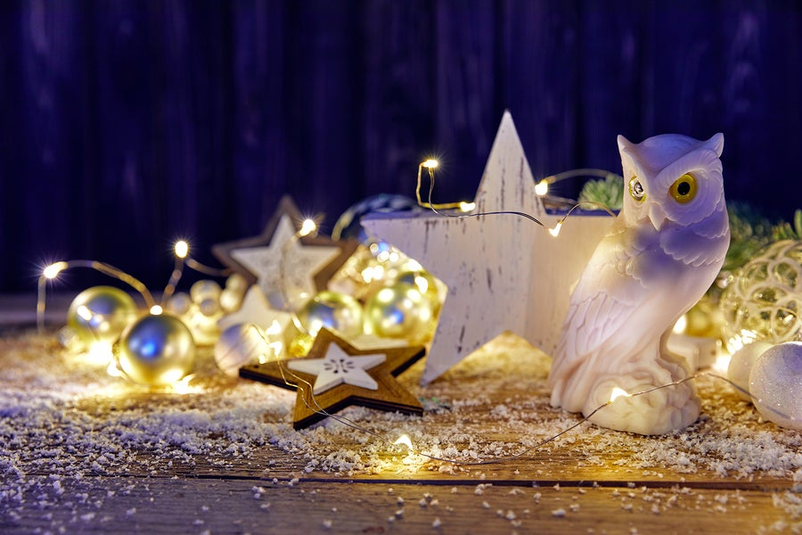 Los búhos decorativos pueden incorporarse en Navidad.