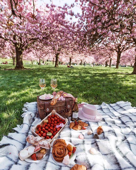 Decorar un picnic al aire libre.