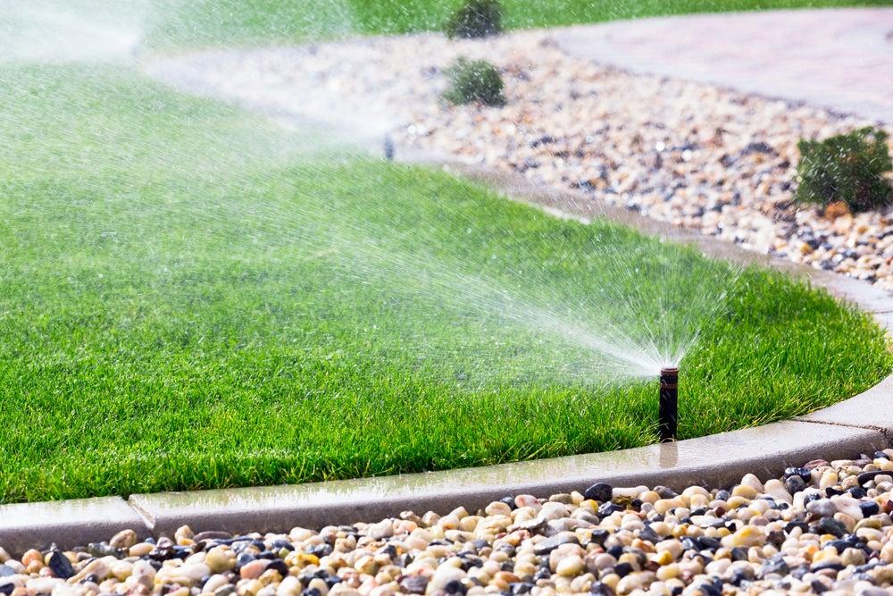 Sistemas de riego automáticos para tener en el jardín