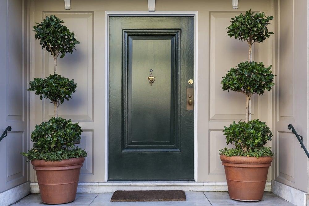 Entrada con plantas a ambos lados de la puerta.