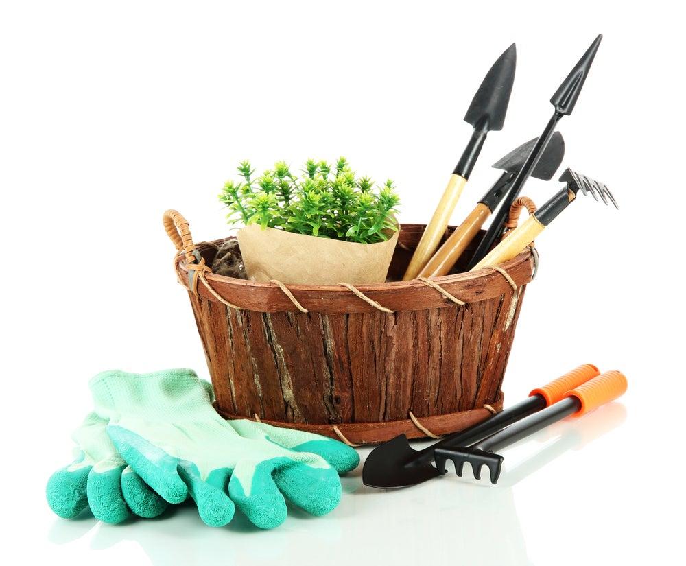 Herramientas de jardinería.
