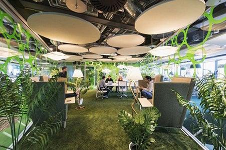 Oficinas de Google con plantas.