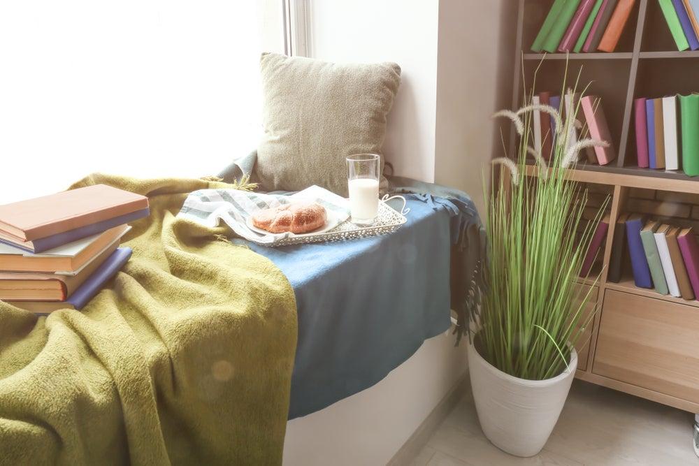 Rincón de lectura con planta.