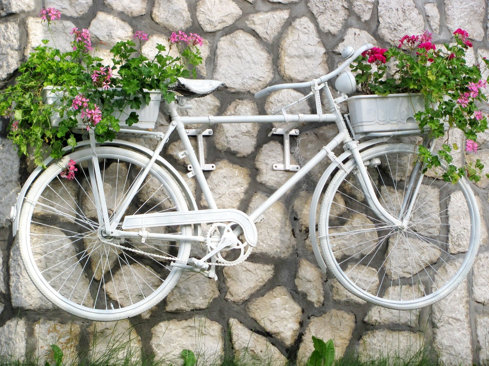 Paint your bicycle white to create a vintage planter.