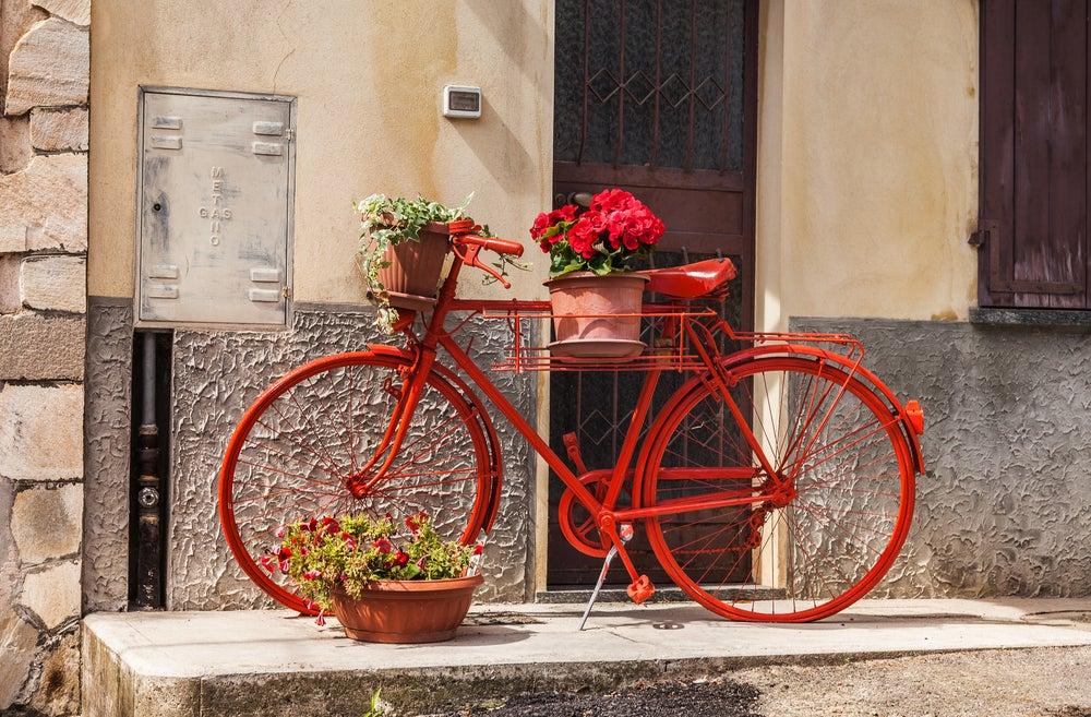 Bicicleta roja con maceteros.