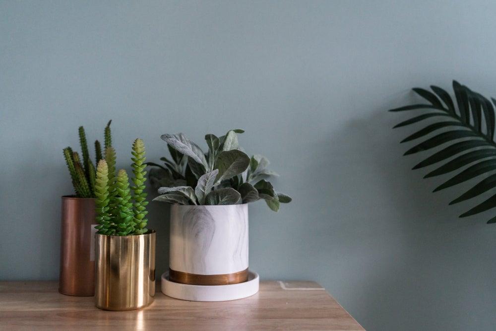 3 jarrones de diseño minimalista