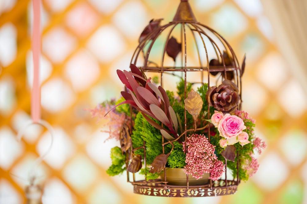 Jaulas con flores.