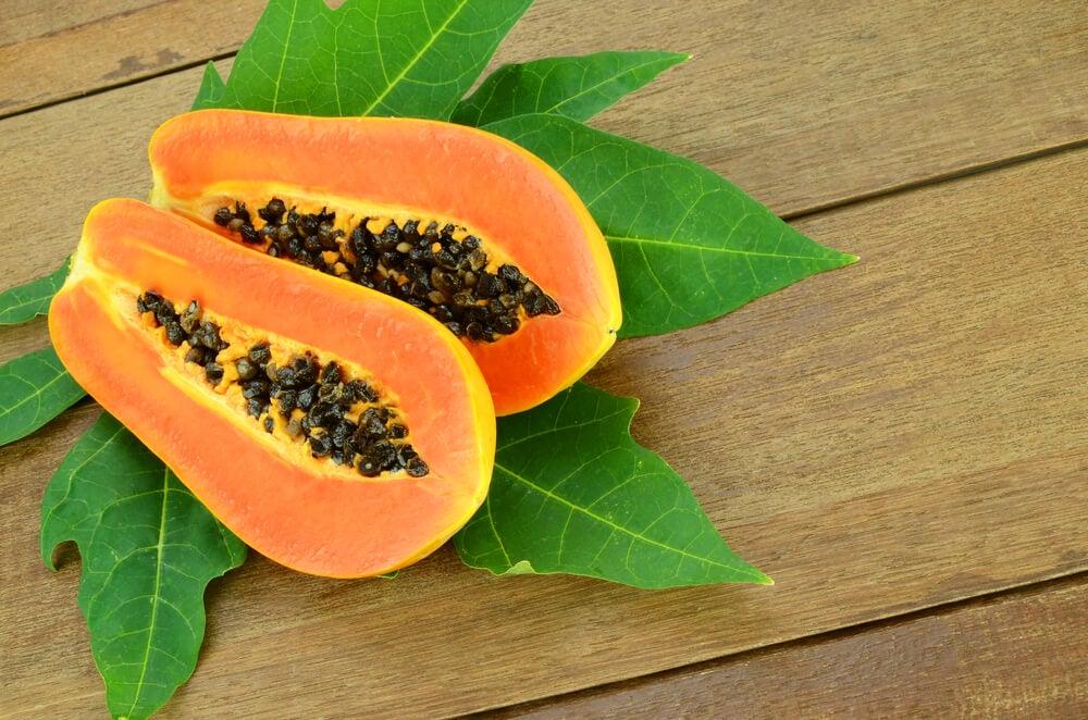 Planta carica papaya.