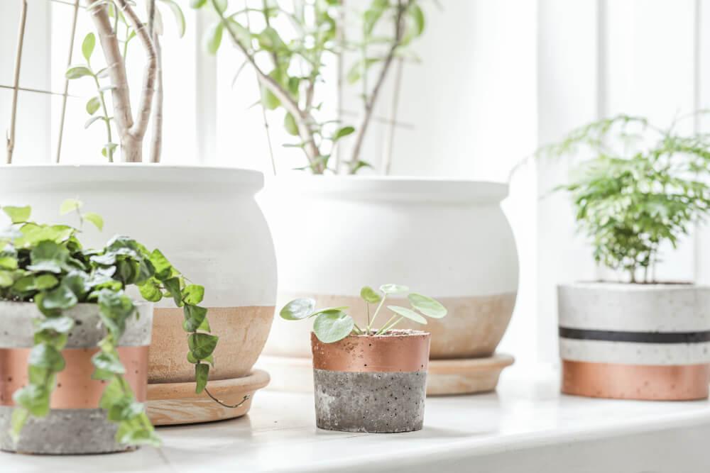 Macetas de cerámica.