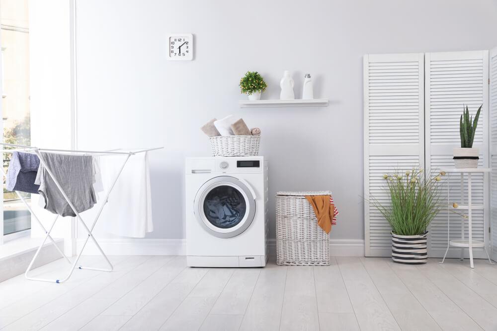 La secadora, un electrodoméstico fuera de lo común