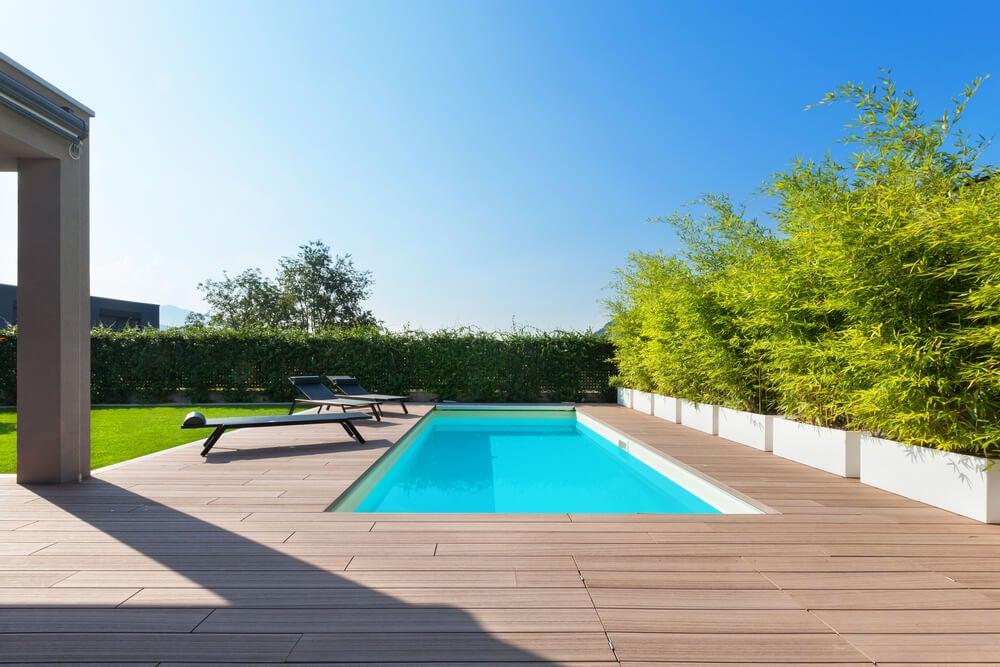 Los mejores árboles para decorar tu jardín